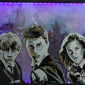 Portrait de Harry Potter, Hermione et Ron sur tableau éclairé par leds et phosphorescent.